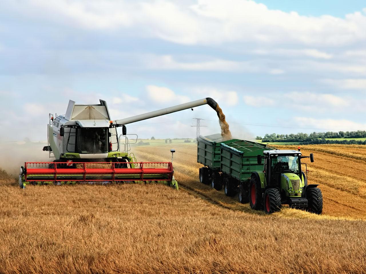 Getreideernte mit Traktor und Mähdrescher