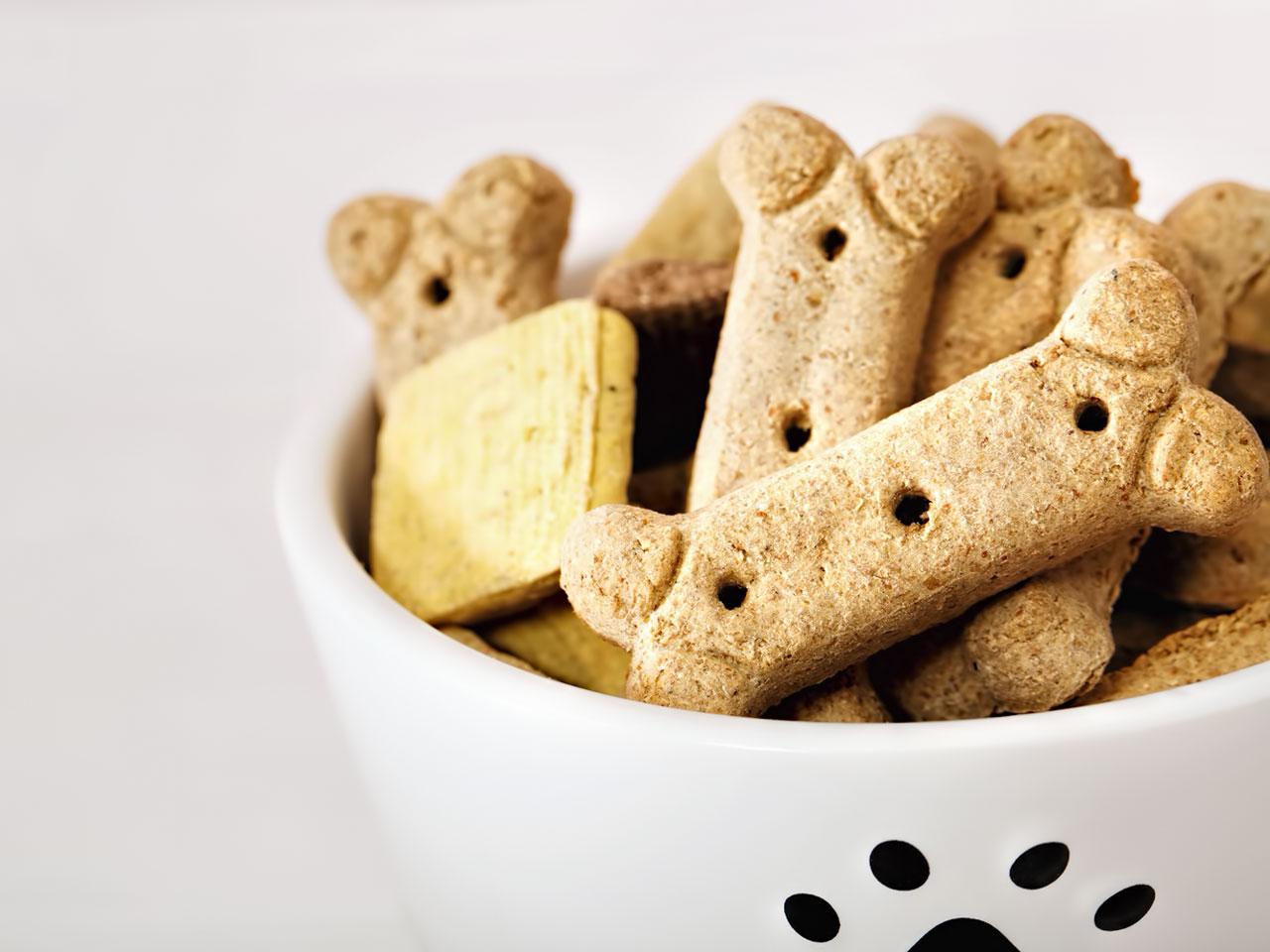 Hundesnacks in einem Fressnapf