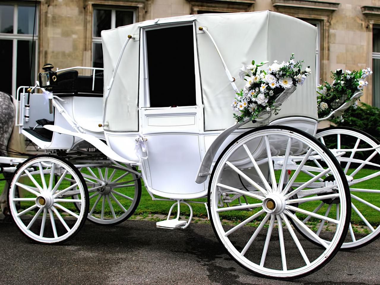 Pferde Hochzeitskutsche